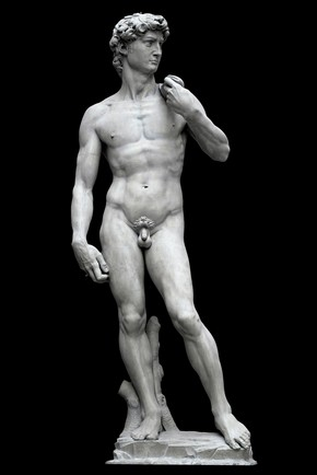 Plaster cast of original statue of 'David', by Michelangelo, Florence, Italy, 1501-4. Cast by unknown maker, Florence, Italy, about 1857. Museum no. REPRO.1857-161