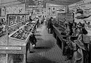 Figure 10 - The Food and Animal Products Collection, South Kensington Museum. From The Leisure Hour, 14 April 1859