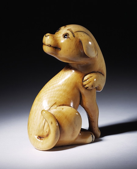 carved ivory netsuke in the shape of a dog japan about 18th century museum no a44 1930