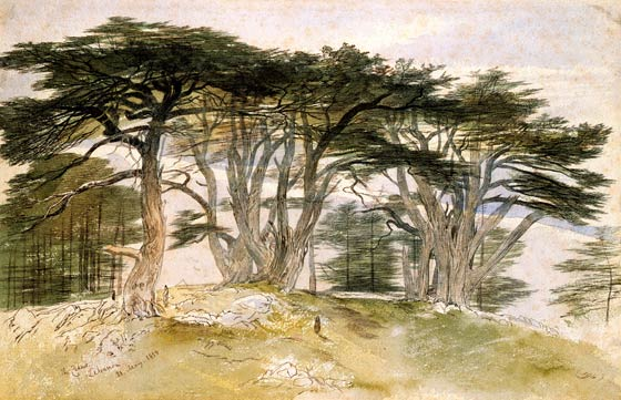 British Watercolours 1750-1900: Depicting Trees