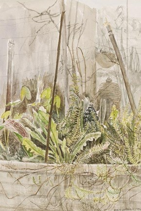 Maurice Sheppard, watercolour, 1984. Museum no. E.499-2009