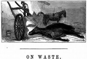 Figure 6 - Illustration to the chapter 'On Waste' from Edwin Lankester, The Uses of Animals in Relation to the Industry of Man; Being a course of lectures delivered at the South Kensington Museum (London: Robert Hardwicke, 1860), 140.