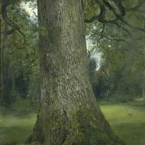 Figure 9. 'Study of the trunk of an elm tree' by John Constable (RA), about 1821, Museum no. 786-1888