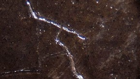 Photomicrograph of 'Twilight' - showing the underlying paint protruding through the cracks in the paint surface. Click to enlarge