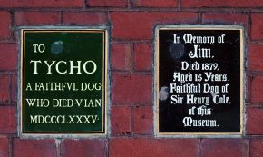 Plaques commemorating Jim and Tycho in the John Madejski garden. © Victoria and Albert Museum, London.