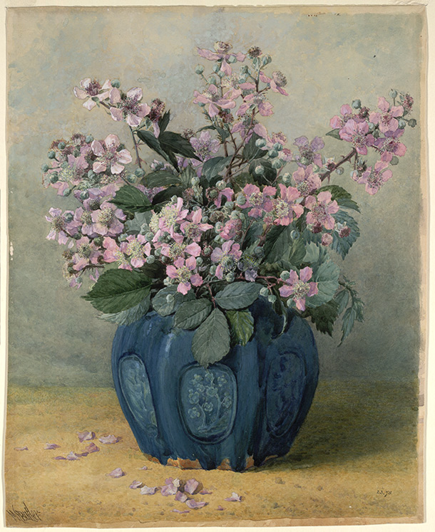 British Watercolours 1750 1900 Still Life Amp Flower