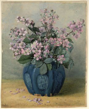 Mary Butler, 'Blackberry Blossom', 19th century, watercolour drawing. Museum no. 23-1878, © Victoria and Albert Museum, London