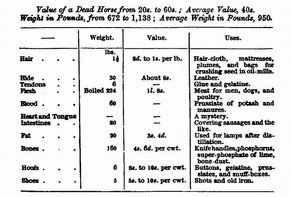 Figure 7 - Table from Edwin Lankester, The Uses of Animals in Relation to the Industry of Man; Being a course of lectures delivered at the South Kensington Museum (London: Robert Hardwicke, 1860), 159