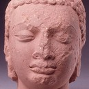 Head of the Buddha sandstone Mathura, Uttar Pradesh 5th century Museum no. IM.4-1927