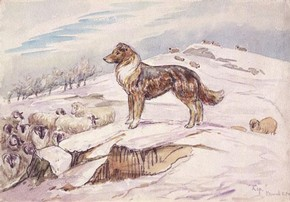 Beatrix Potter, 'Sketch of Kep guarding sheep' © Frederick Warne