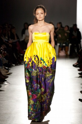 Gown by Erdem, A.W 2008. Image  David Hughes