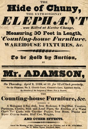 Poster advertising the sale of an elephant hide, 1826
