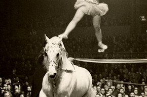 Florence Stephenson, Bertram Mills' Circus, 1948-49 season