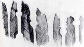 Drawing of stems by Rifat Afzal, Year 11, Walthamstow School for Girls