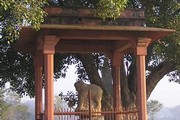 Pillar and capital erected by Ashoka, Sankasya. Photograph courtesy of Firefly Mission, 2007