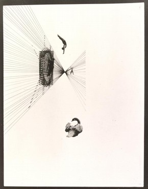 Fotoplastiken; Leda und der Schwan, photograph, Lszl Moholy-Nagy, 1926. Museum no. CIRC.202-1974