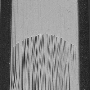 Figure 3. Head edge of 1990s binding showing compensation stubs. Photograph by Bridget Mitchell.