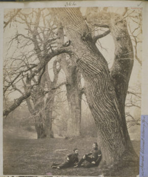 Two soldiers sitting under a Spanish Chestnut, Albany Park, Surrey;