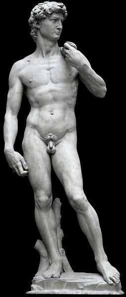 A plaster cast of the celebrated marble sculpture of Michaelangelo's David Museum no. REPRO.161-1857) © Victoria and Albert Museum, London.