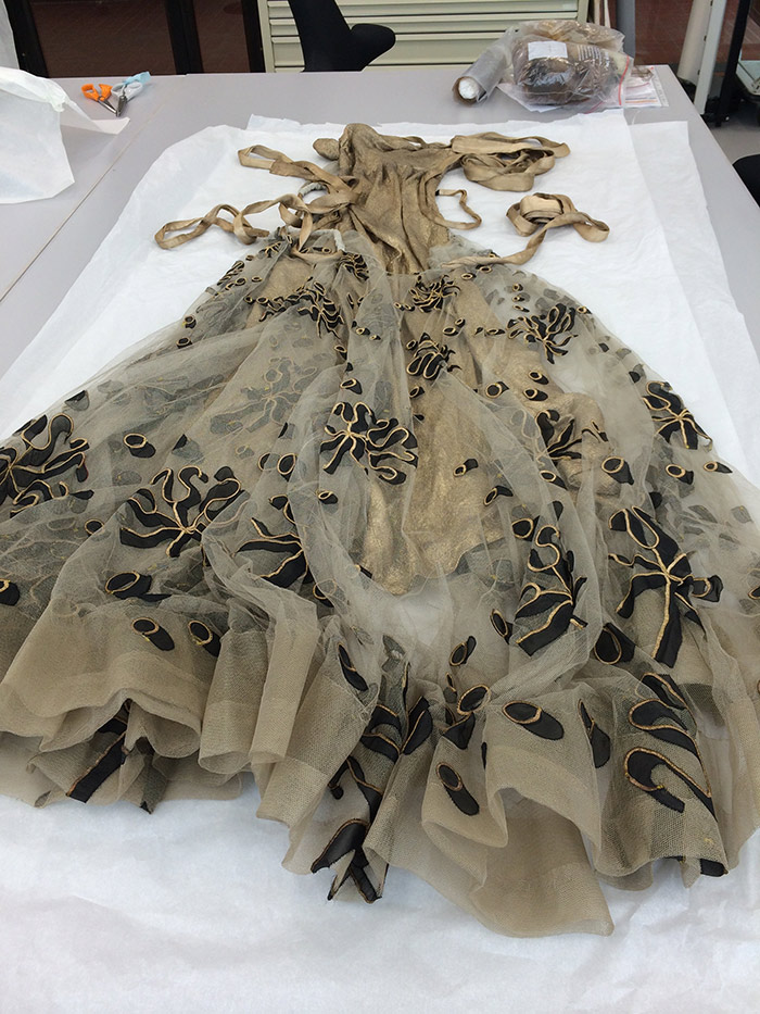 The dress in textile conservation before any investigation.