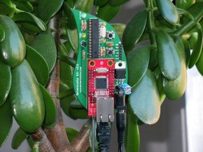 Botanicalls sensor