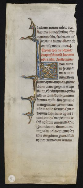 8987a, Page from the Glazier-Rylands Bible (Preface of St Jerome to the Acts of the Apostles) with an initial I decorated with a dragon with foliated tail; Low Countries (Hainaut); 1260-70, © V&A Museum.