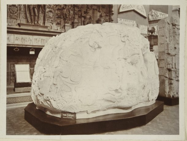 PH.72C-1894 Photograph of a plaster  cast of 'The Turtle,'  Zoomorph P monument at  Quiriguá, Guatemala