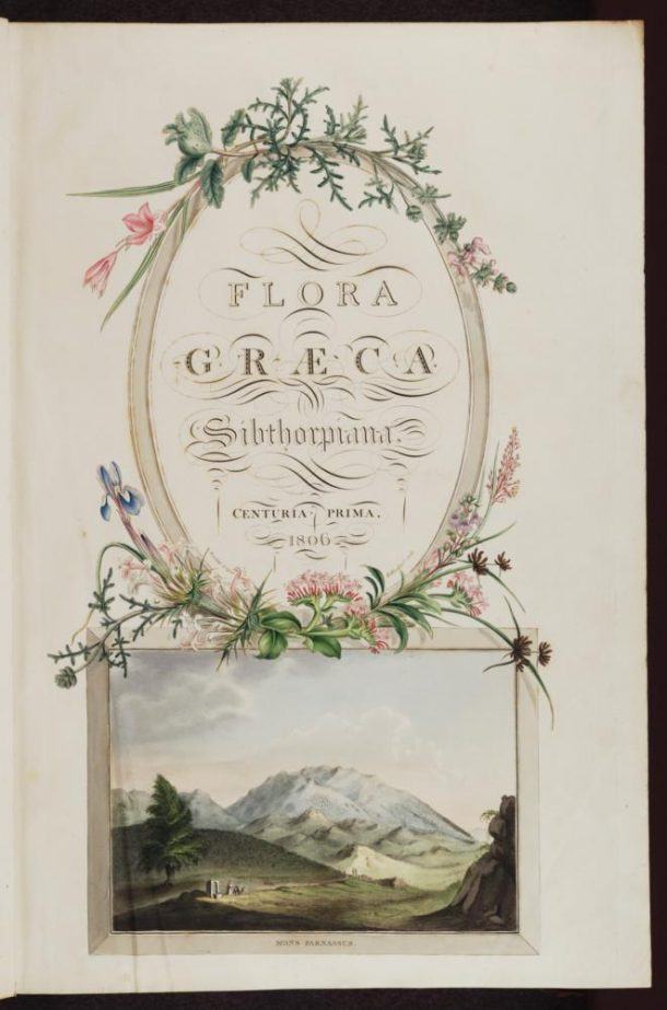 James Sowerby (after Ferdinand Bauer), Frontispiece for The Flora Graeca, 1806-40, hand coloured engraving (MS. Sherard 761).  © Bodleian Library, University of Oxford, 2015