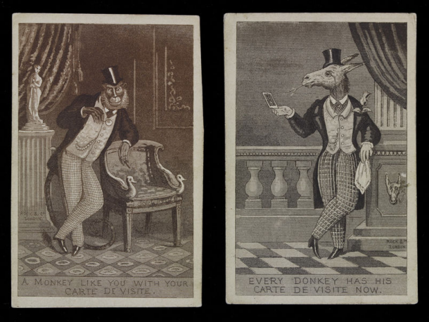Two Satirical Prints Showing A Monkey And Donkey Posing For Carte De Visite Photographs