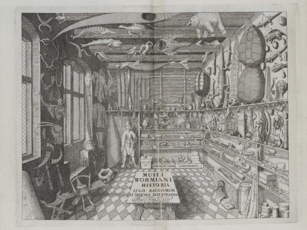 Museum Wormianum. Engraving by G. Wingendrop, 1655.