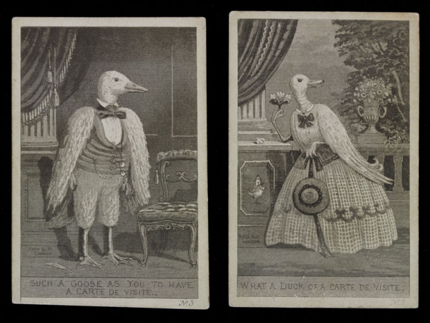 Two Satirical Prints Showing A Goose And Duck Posing For Carte De Visite Photographs