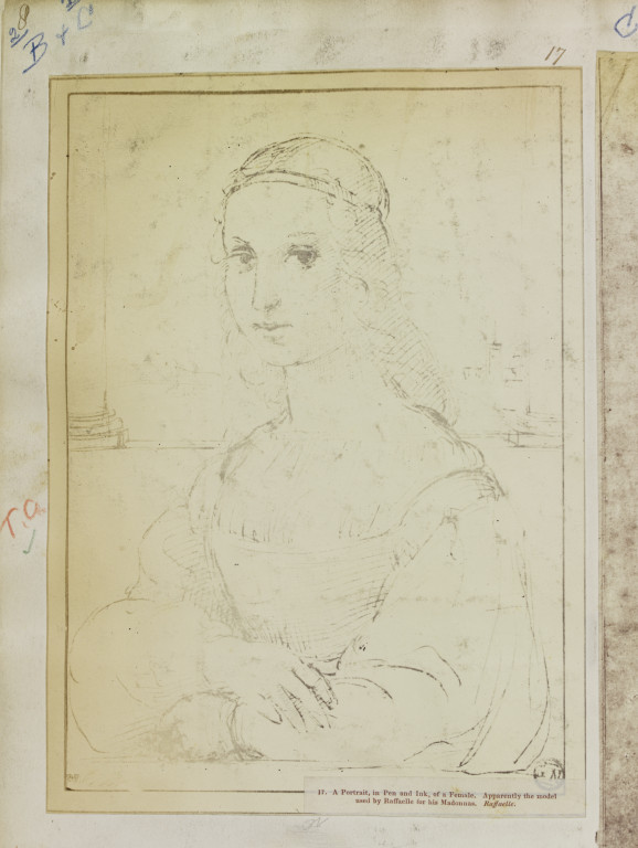 Portrait of a female by Raphael, pencil drawing, said to be the model for his Madonnas