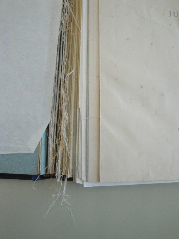 Volume 2 showing leaves shearing along cloth guard