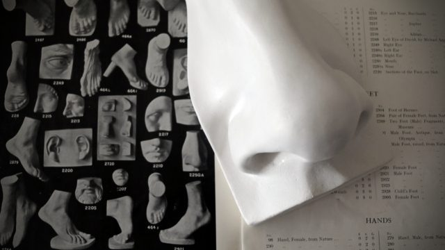 David Nose Plaster Cast by FeliceCalchi - plaster casts & sculptures, Rome over an old Cast Catalogue by Domenico Brucciani, London. Image, Andrea Felice 2017.