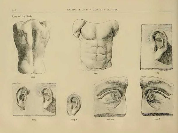 Page from the 1894 catalog showing some of the David's facial features. Image, courtesy of the Giust Gallery. Courtesy of the Giust Gallery.