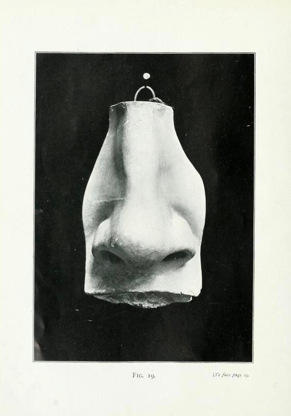 5. Lanteri Nose Finished. Details from Édouard Lantéri, Modelling: a guide for teachers and students, vol. 1 (London: Chapman & Hall, 1902).