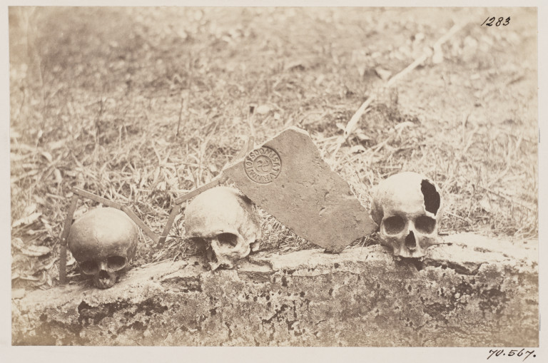 Photograph of skulls from the Catacomb of S. Cyriaca, Rome, as well as tiles and a stamped brick