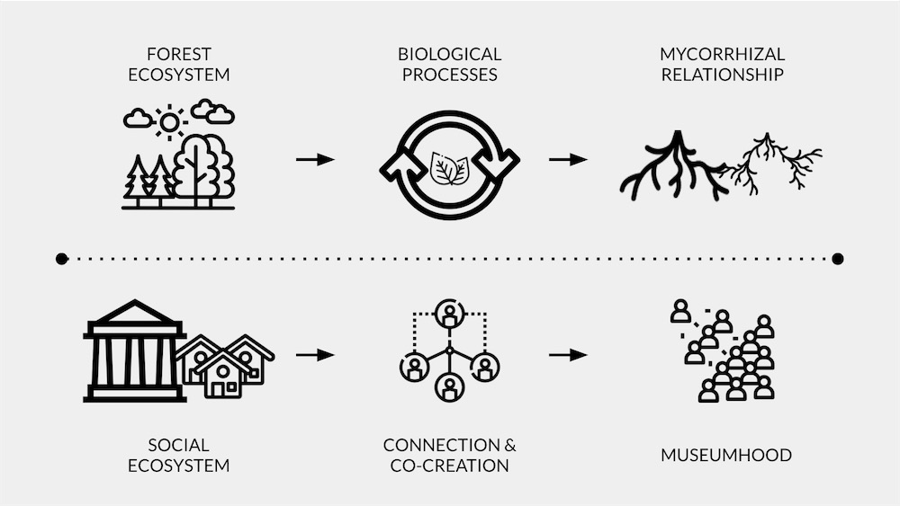 Diagram of a living museum ecosystem linking society and co-creation to museumhood