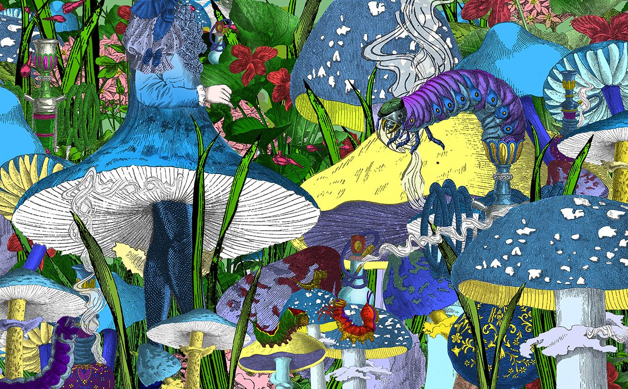 Original illustration of 'Advice from a Caterpillar' by Kristjana S Williams