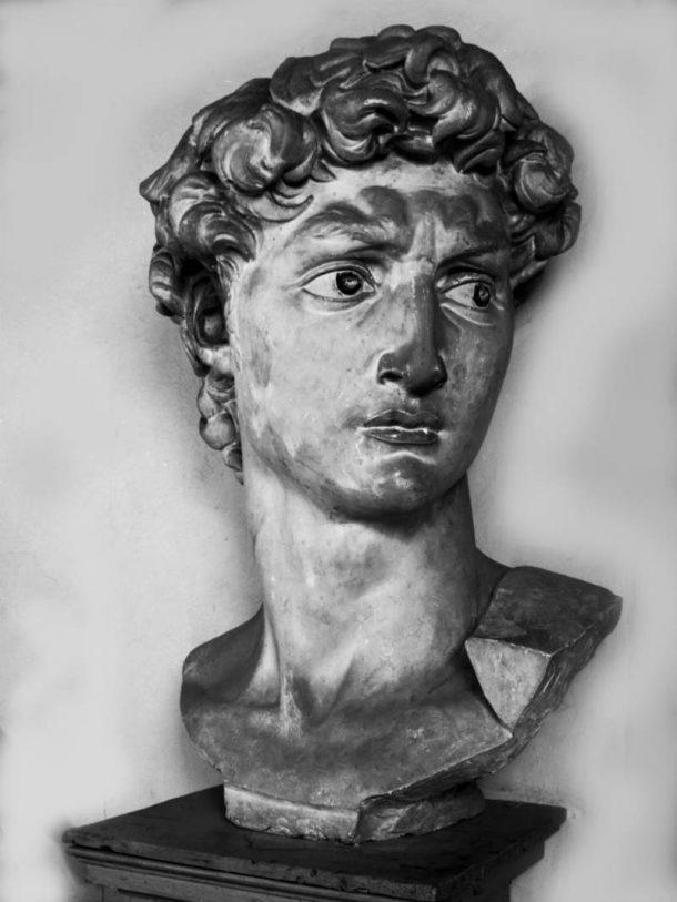 Figure 4. Clemente Papi, Plaster cast of the head of David by Michelangelo, 1848. Accademia di Belle Arti, Florence. Photo credit: Gabinetto Fotografico degli Uffizi, 2012.